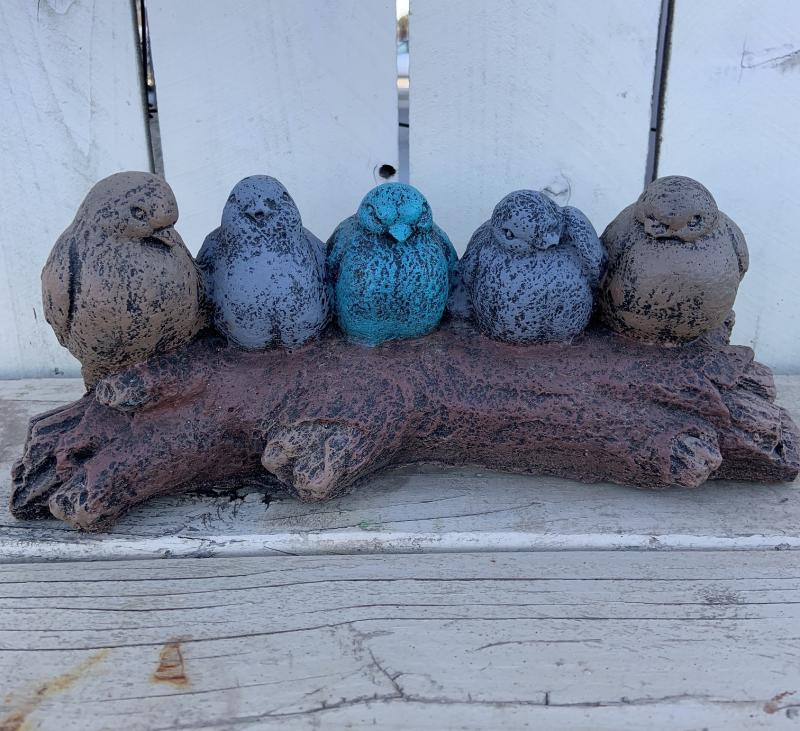 birds on a log